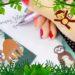Urban Jungle und Nature Love - das war die TrendRaider Box im Juni (unbezahlte Werbung)